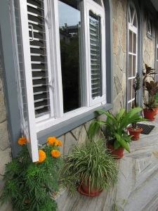 Pleasant Plants Near My Door