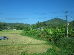 On the way to Phrae (taken through the window of a zooming bus!)